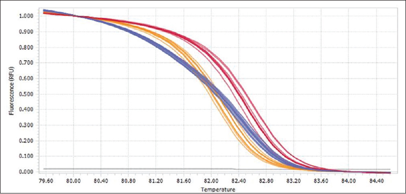 Figure 1: Normalized melting curves following analysis of HRM data for the <i>IL10</i> SNP (A/C). [INSIDE:1] Homozygote C/C [INSIDE:2] Heterozygote A/C [INSIDE:3] Homozygote A/A
