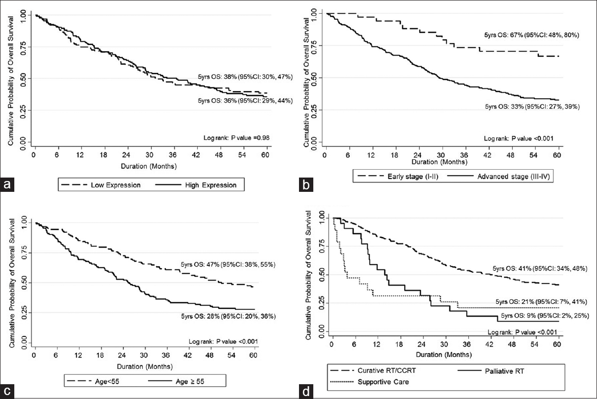 Figure 3: Kaplan–Meier curves of overall survival according to prognostic factors. There is a significant difference in 5-year overall survival between early and advanced stages (b), age group (c) and treatment (d), but not excision repair cross complementing Group 1expression level (a)